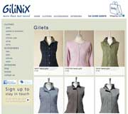 Gilinix Website Design